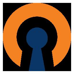 Ssl vpn logo